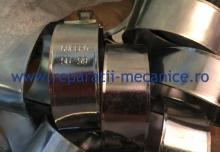 Colier SGB W1 56-59 mm